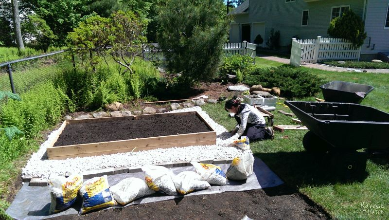 adding crushed white stone around a diy raised garden bed