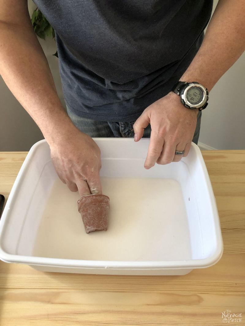 small terra cotta pot in a tub of baking soda and water