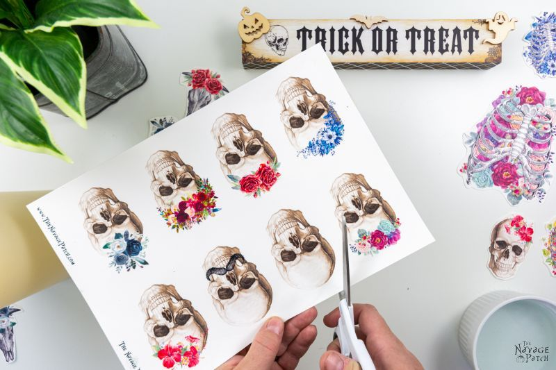 cutting a skull decal from a sheet of water decals