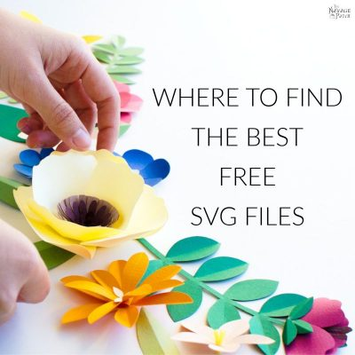 Free SVG Cut Files and How To Find The Best SVG Designs | TheNavagePatch.com