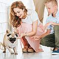 4 Benefits of Pet Adoption