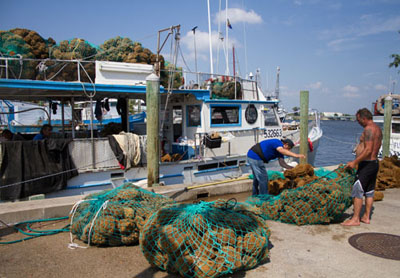 Sponge Docks, Tarpon Springs, Florida