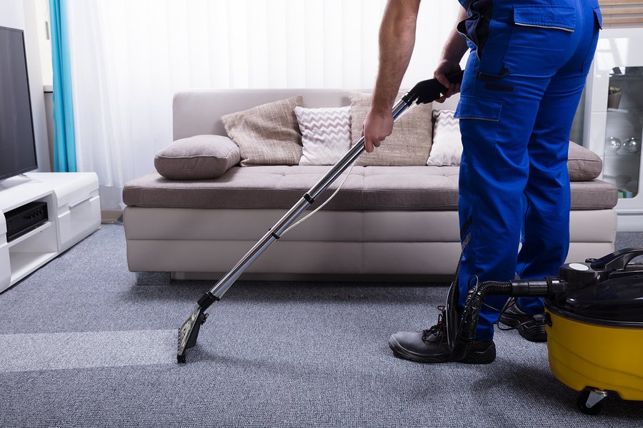 newscastle-cleaning-services-carpet-cleaning-2