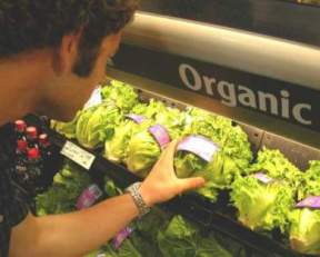 Healthy and Nutritional Organic Produce