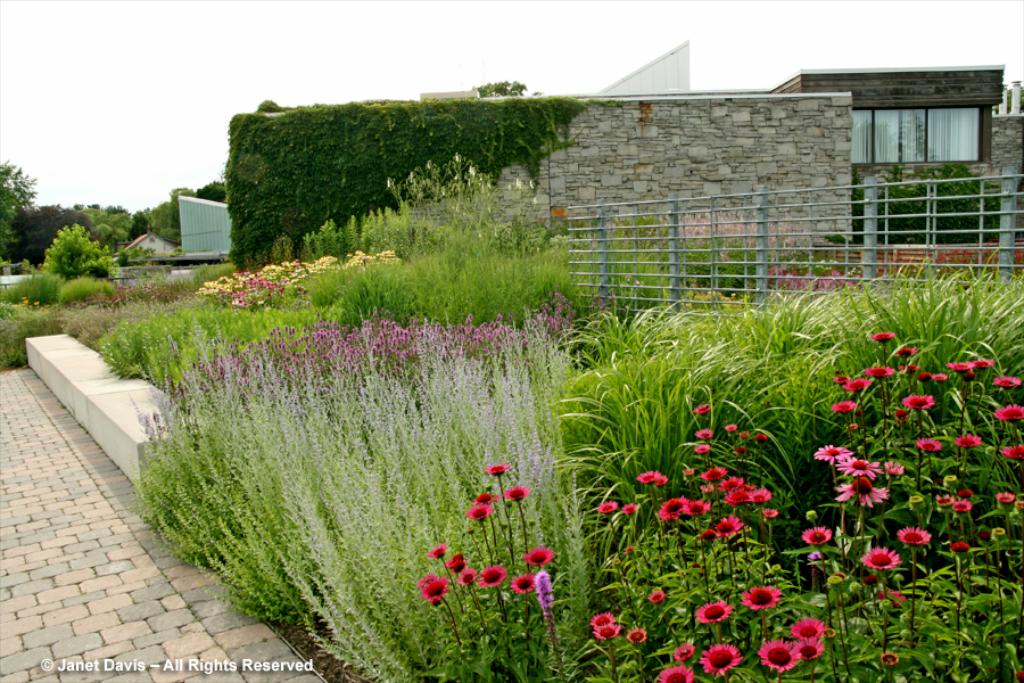 Design My Own Back Garden