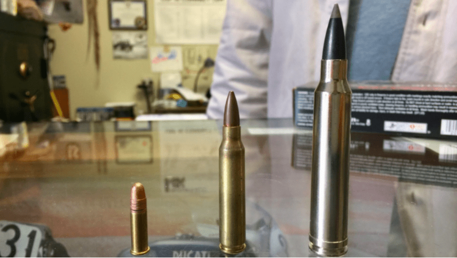 Bullets at local firearms dealer