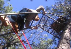 climbing tree stand for hunting