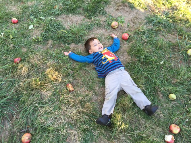 Best Apple Picking In New York
