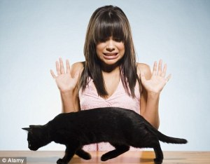 """<img src=""""http://www.thenextrex.com/wp-content/uploads/2015/06/article-0-09B801B9000005DC-228_468x365.jpg"""" alt=""""silly girl scared of cats"""">"""