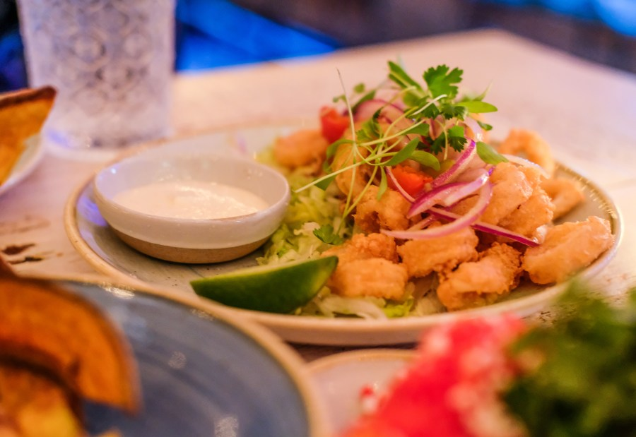 Fried calamari appetizer at Citrus & Salt in Boston