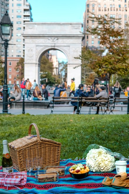 picnic-washington-square-park