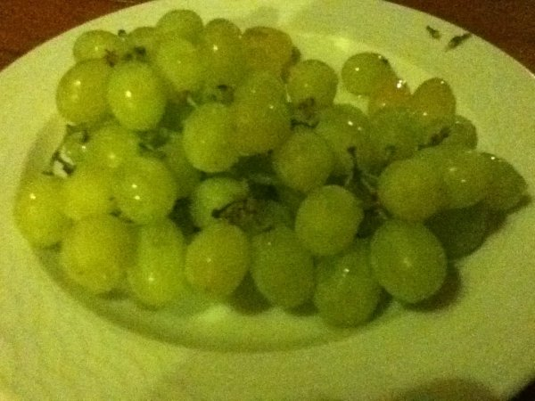 Grapes to round off our vegan dinner at Dias Restaurant in Mikro Papingo, Greece