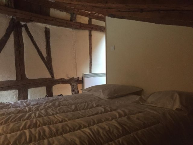 Vegan travel - our attic apartment in Toulouse
