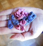 Sugared violets - a vegan Toulouse specialty