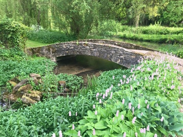 bridge - vegan travel in the Cotswolds