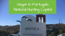 Mértola: Vegan in Portugal's National Hunting Capital