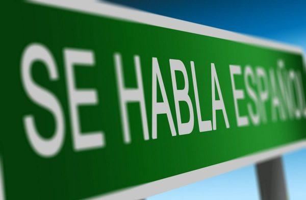 Learn Spanish as a vegan on the Camino de Santiago