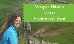 Vegan Hike along Hadrian's Wall