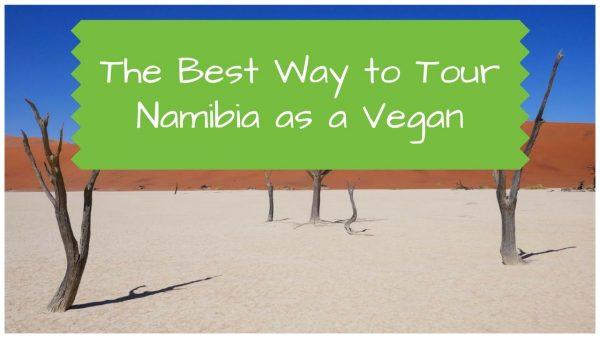 Tour of Namibia as a Vegan