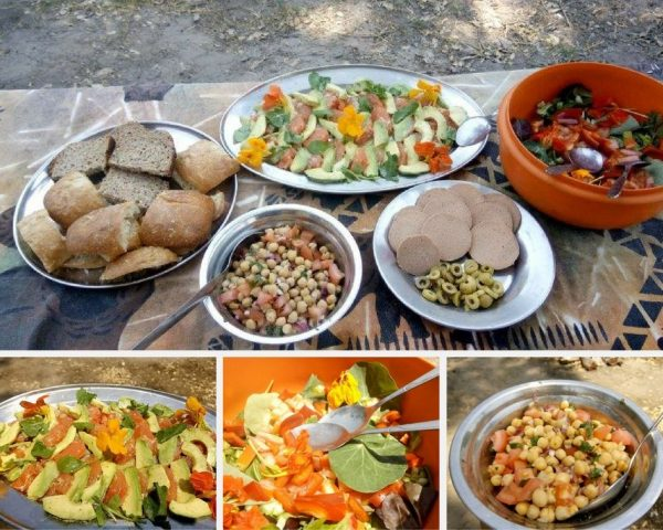 vegan lunch in the okavango delta - vegan guide