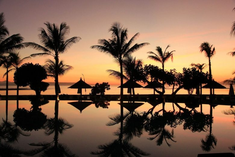 Bali sunset and palm trees - vegan Bali