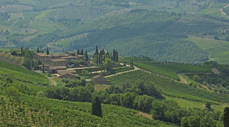 Querciabella - organic vegan wine brands