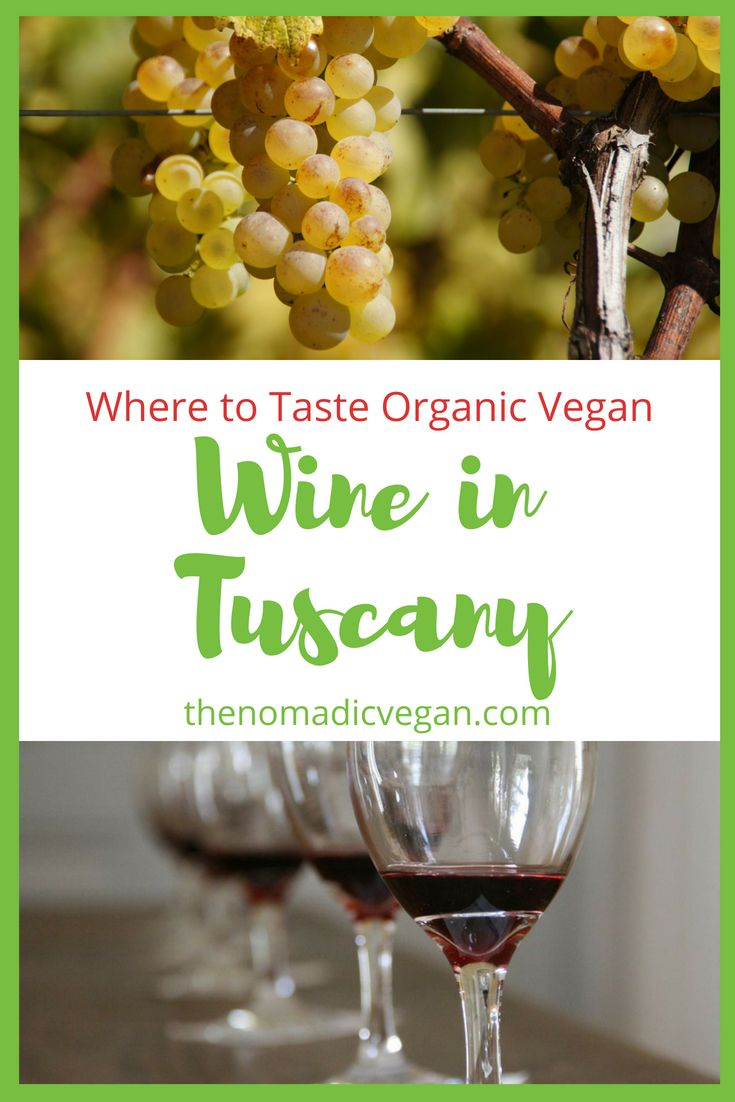 Where to Taste Organic Vegan Wine in Tuscany Italy
