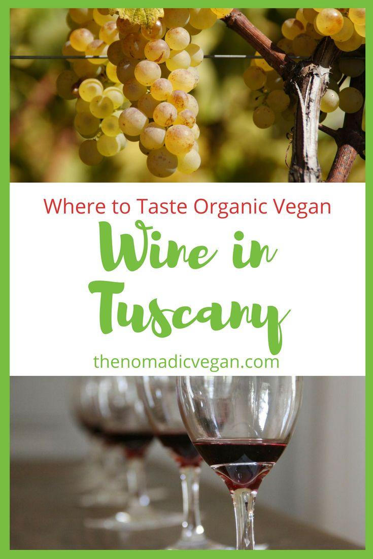 Where to Taste Organic Vegan Wine in Tuscany Italy