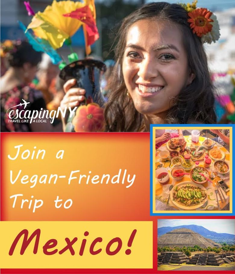 Vegan Tours of Mexico