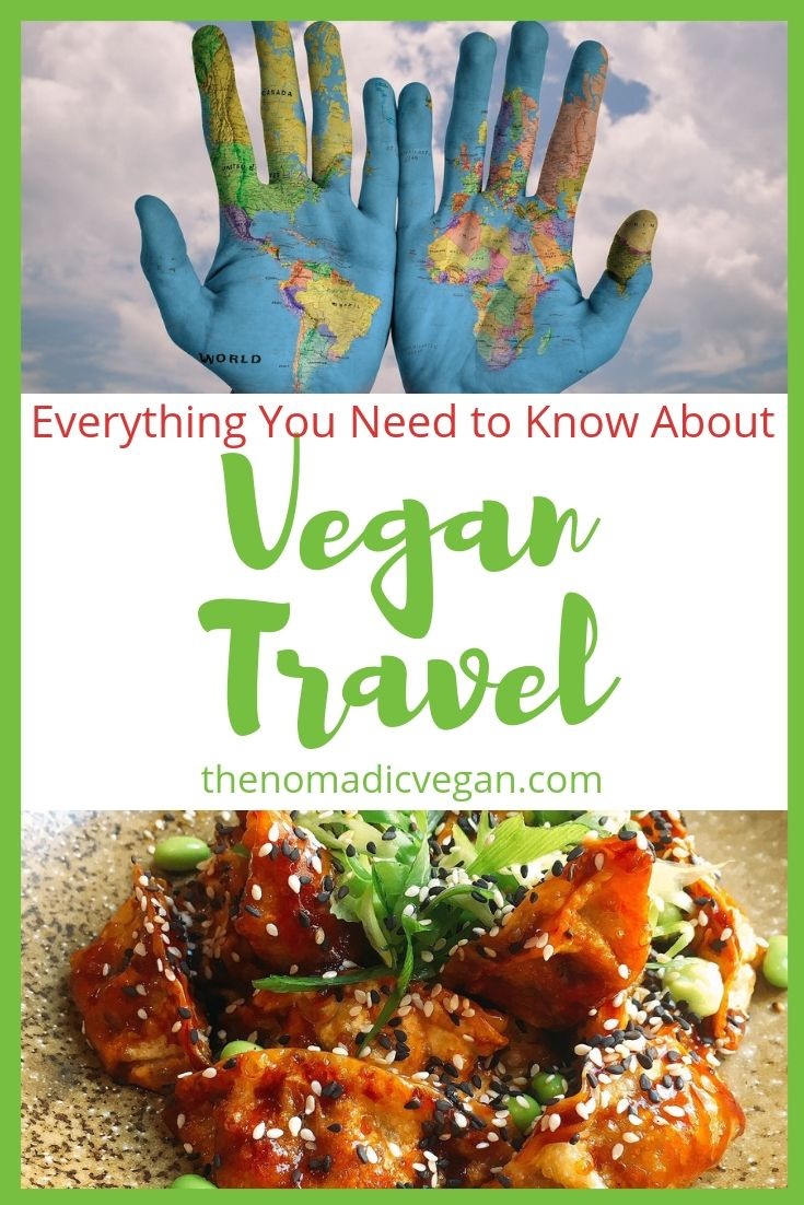 Vegan Travel FAQ - Everything you Need to Know about Travel as a Vegan