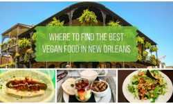 Where to Find the New Orleans Vegan Restaurants
