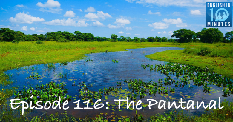Podcast episode on the Pantanal