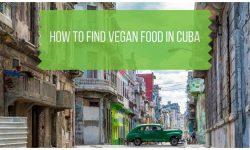 Vegan Cuba Travel Guide