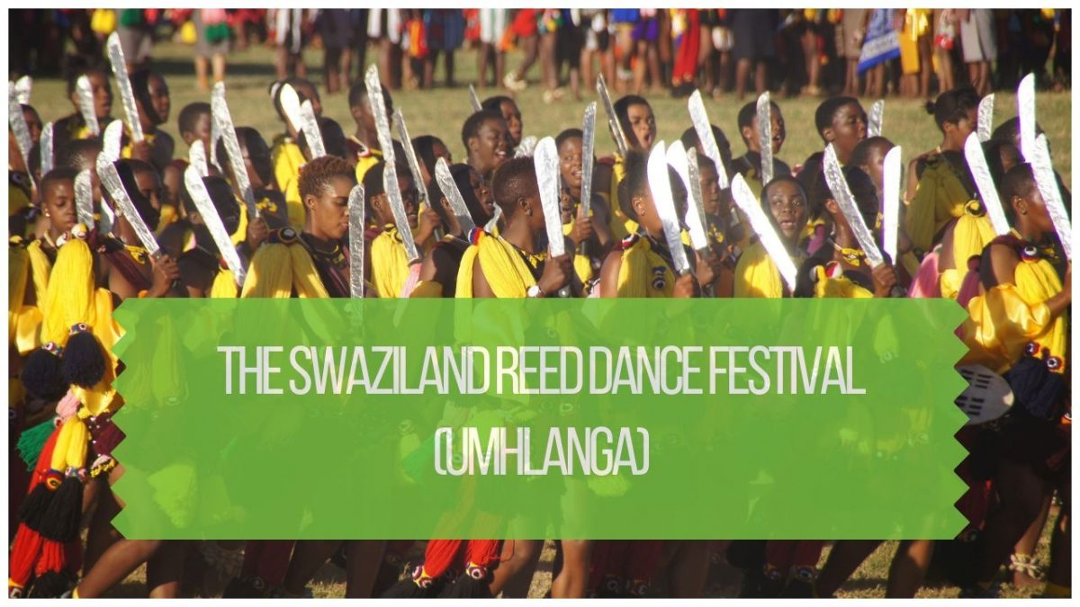 Swaziland Reed Dance Umhlanga Festival: How And When To See It
