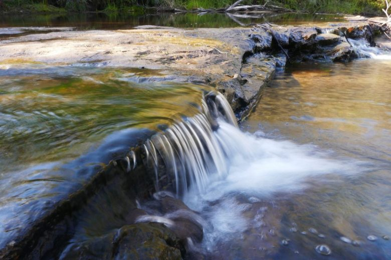 Jamison Creek on the Charles Darwin Trail near Wentworth Falls in the Blue Mountains