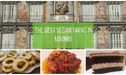 The Best Madrid Vegan Tapas