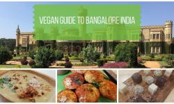 Guide to Vegan Restaurants in Bangalore India
