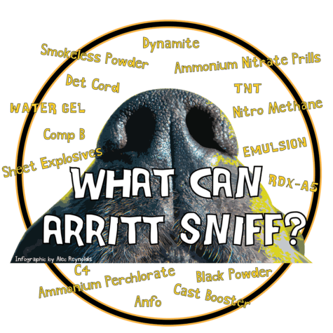 What can Arritt sniff?