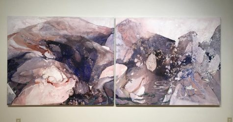 """Erratics"" art exhibit explores deconstructed boundaries"