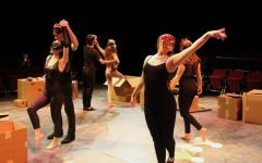 First-years showcased in 'The Secret in the Wings'