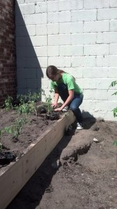 A volunteer from ACAC helps with the planting. (Photo courtesy Emily Leone Honhart)