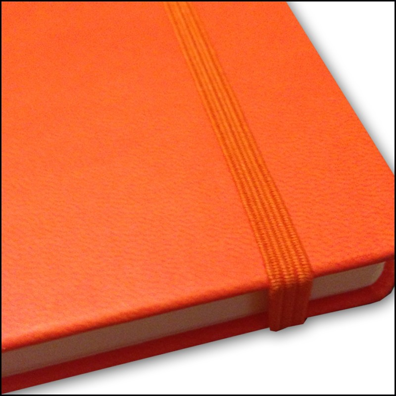 Image Showing Coordinating Elastic Strap for Branded Notebooks on the Castelli Branded Notebooks from The Notebook Warehouse