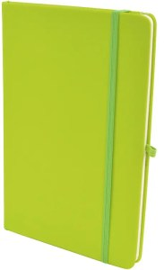 Image showing Light Green Mole Promotional Notebooks from The Notebook Warehouse