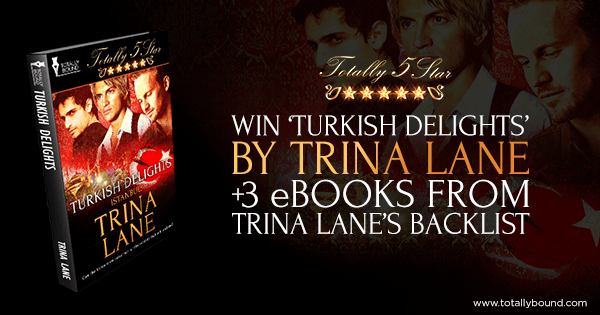 CLICK HERE TO ENTER THIS AND THREE MORE TITLES FROM TRINA LANE'S BACKLIST