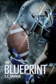 Review the blueprint by se harmon the novel approach reviews review the blueprint by se harmon malvernweather Gallery