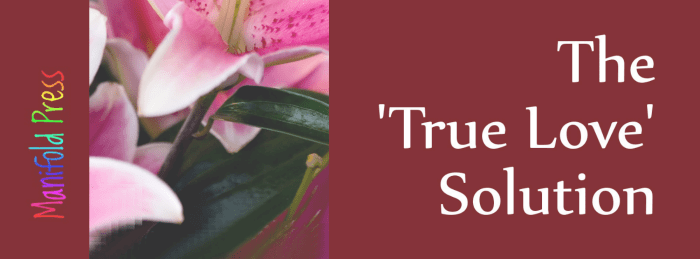the-true-love-solution-banner