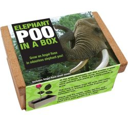 Secret Santa Gift Elephant Poo