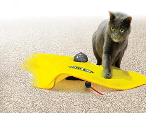 Cat and Mouse mat