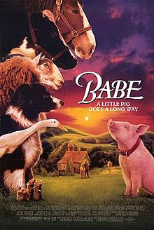 The film Babe, about a little pig who wanted to be a sheepdog