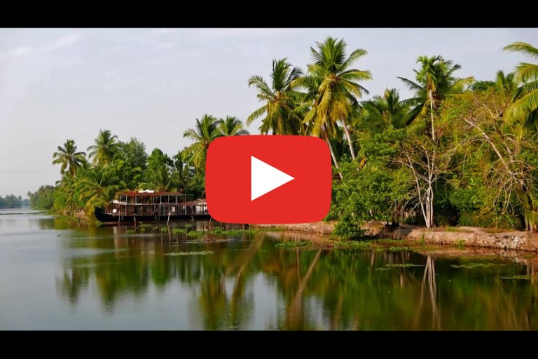 Read more about the article Kerala – India